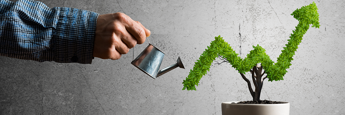 Do you have profitability with positive cash flow?